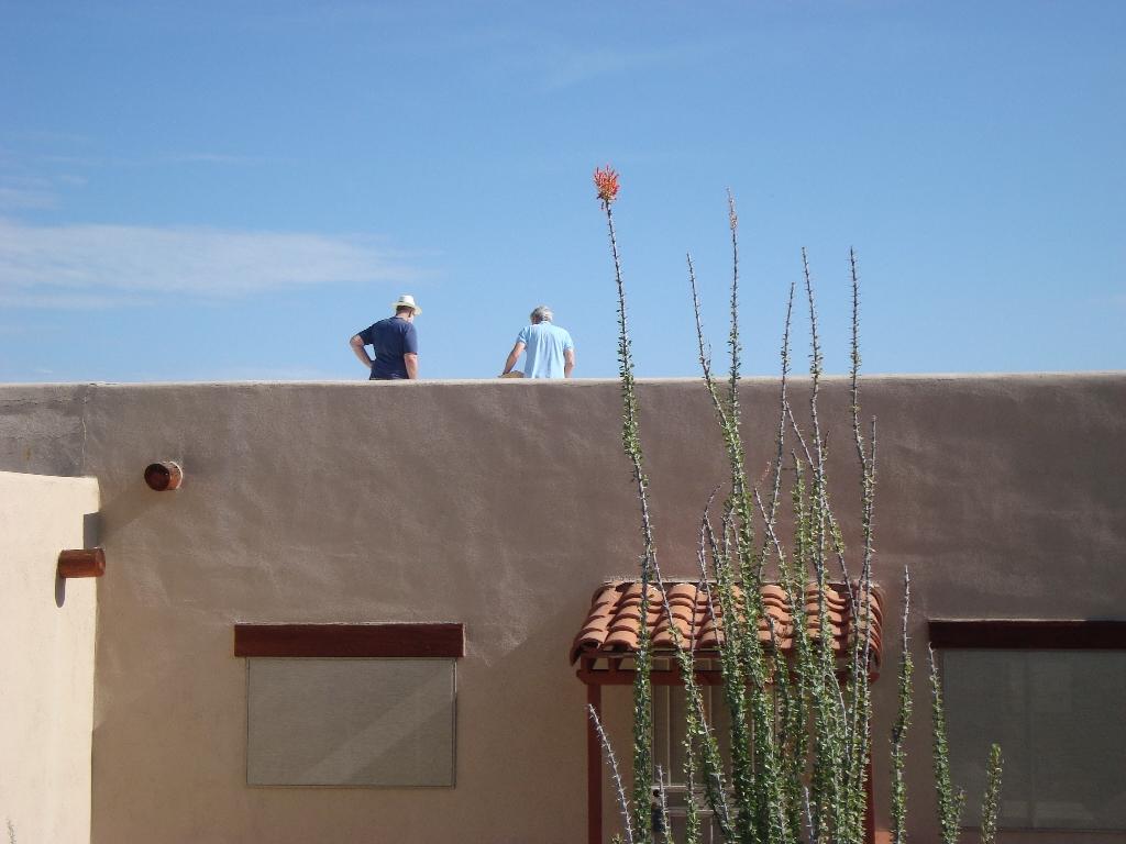 RoofChipInspector3
